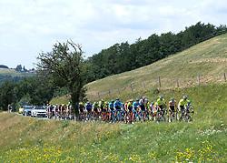 08.07.2019, Wiener Neustadt, AUT, Ö-Tour, Österreich Radrundfahrt, 2. Etappe, von Zwettl nach Wiener Neustadt (176,9 km), im Bild Das Peleton der Ö-Tour in der Bergwertung Stollberg, Niederösterreich // the peleton climbs the Stollberg Lower Austria during 2nd stage from Zwettl to Wiener Neustadt (176,9 km) of the 2019 Tour of Austria. Wiener Neustadt, Austria on 2019/07/08. EXPA Pictures © 2019, PhotoCredit: EXPA/ Reinhard Eisenbauer