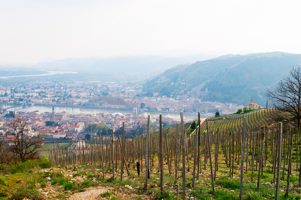 The Hermitage chapel on top of the hill with a view across the river on Tournon. The Hermitage vineyards on the hill behind the city Tain-l'Hermitage, on the steep sloping hill, stone terraced. Sometimes spelled Ermitage. Tain l'Hermitage, Drome, Drôme, France, Europe