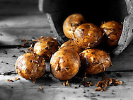 Fresh dug new potatoes
