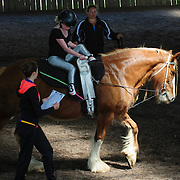 Riding for the Disabled / Horse Vaulting
