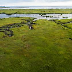 The salt marsh in Wellfleet Bay, Wellfleet, Massachusetts.