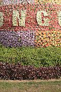 Plastic flower monument Cat Ba town, Cat Ba Island, Vietnam