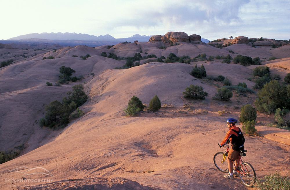 Moab, UT..Mountain biking on the Moab Slickrock Bike Trail.  Navajo Sandstone.  BLM land.