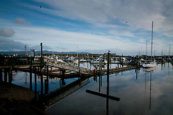 Marina at Ilwaco Harbor, Ilwaco, Washington, US