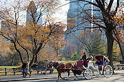 Tourists taking traditional horse and carriage ride in winter time in Central Park, New York, USA