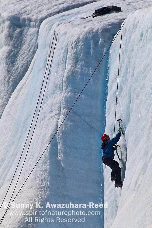 Ice Climbing, Root Glacier, model released, Wrangell - St. Elias Park, Alaska