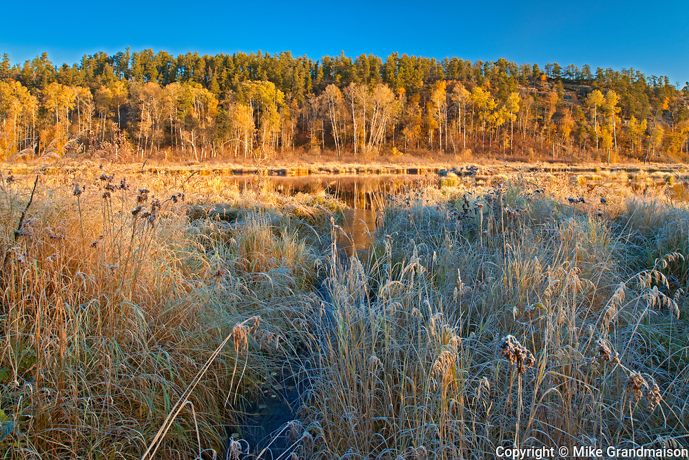 Autumn colors in wetland<br />Whiteshell Provincial Park<br />Manitoba<br />Canada