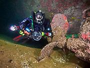 """""""Ruby E"""" Shipwreck, California, Propeller"""