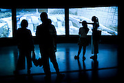 "People visit the ""We love video this summer"" exhibition at Pace Beijing Art Gllery at 798 Art District in Beijing, China, August 19, 2014. <br /> <br /> 798 Art District (Chinese: 798艺术区; pinyin: 798 Yìshùqū), or Dashanzi Art District, is a 50-year old decommissioned military factory buildings with unique architectural style. Located in Chaoyang District of Beijing, that houses a thriving artistic community. Since the beginning of 2000, 798 has become a centre for art galleries, artists's ateliers and contemporary arts exhibitions. The buildings are within alleys number 2 and 4 on Jiǔxiānqiáo Lù (酒仙桥路), south of the Dàshānziqiáo flyover (大山子桥). <br /> <br /> © Giorgio Perottino"