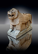 Late Hittite Basalt Portal Lion sculpture from 9th Cent B.C, excavated from Palace Building P Sam'al (Hittite: Yadiya) located at Zincirli Höyük in the Anti-Taurus Mountains of modern Turkey's Gaziantep Province. Istanbul Archaeological Museum inv. No 7777. Late Hittite (Aramaean)  Basalt relief sculpture of an Aslan Lion from 9th Cent B.C, excavated from the west side of the citadel gate of Sam'al (Hittite: Yadiya) located at Zincirli Höyük in the Anti-Taurus Mountains of modern Turkey's Gaziantep Province. Istanbul Archaeological Museum Inv. No 7727. .<br />  <br /> If you prefer to buy from our ALAMY STOCK LIBRARY page at https://www.alamy.com/portfolio/paul-williams-funkystock/hittite-art-antiquities.html  - Type -   Samal   - into the LOWER SEARCH WITHIN GALLERY box. Refine search by adding background colour, place, museum etc<br /> <br /> Visit our HITTITE PHOTO COLLECTIONS for more photos to download or buy as wall art prints https://funkystock.photoshelter.com/gallery-collection/The-Hittites-Art-Artefacts-Antiquities-Historic-Sites-Pictures-Images-of/C0000NUBSMhSc3Oo