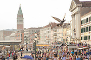 Street View towards St Mark's Square, from Riva degli Schiavoni, Castello district, Venice. Italy, Europe