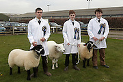5th April 2014<br /> Bishop Burton College Stockmanship Day 2014.<br /> Names left to right: Tyler Sambrook (winner), Mike Clark (2nd) and Kieran Norris (3rd).