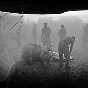Jul 17, 2008 - Zhari District, Kandahar Province, Afghanistan - Canadian soldiers shelter a casualty outside a field hospital from a helicopters dust before moving him to the air ambulance known as a medivac for transport to Kandahar Airfield in Zhari District, Kandahar Province, Afghanistan. .(Credit Image: © Louie Palu/ZUMA Press).