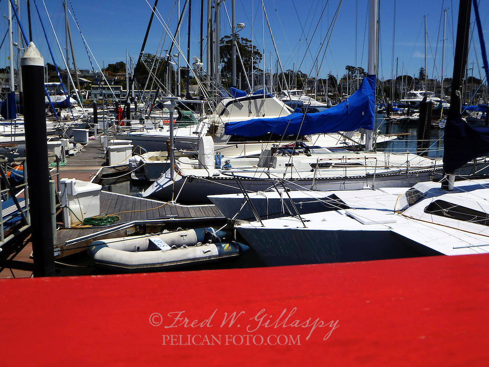 Santa Cruz Harbor 0292