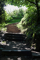 Bright summer sun pours in through the opening at the head of the Wooded steps leading up from Filey Brig Sailing club to the cliff top<br /> <br /> August 2014<br /> Image © Paul David Drabble <br /> www.pauldaviddrabble.co.uk