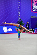 Averina Arina is a Russian gymnast born in Zavolž'e on 13 August 1998. She is the 2017 World All-around silver medalist. Her twin sister Dina Averina, also a rhythmic gymnastics athlete.