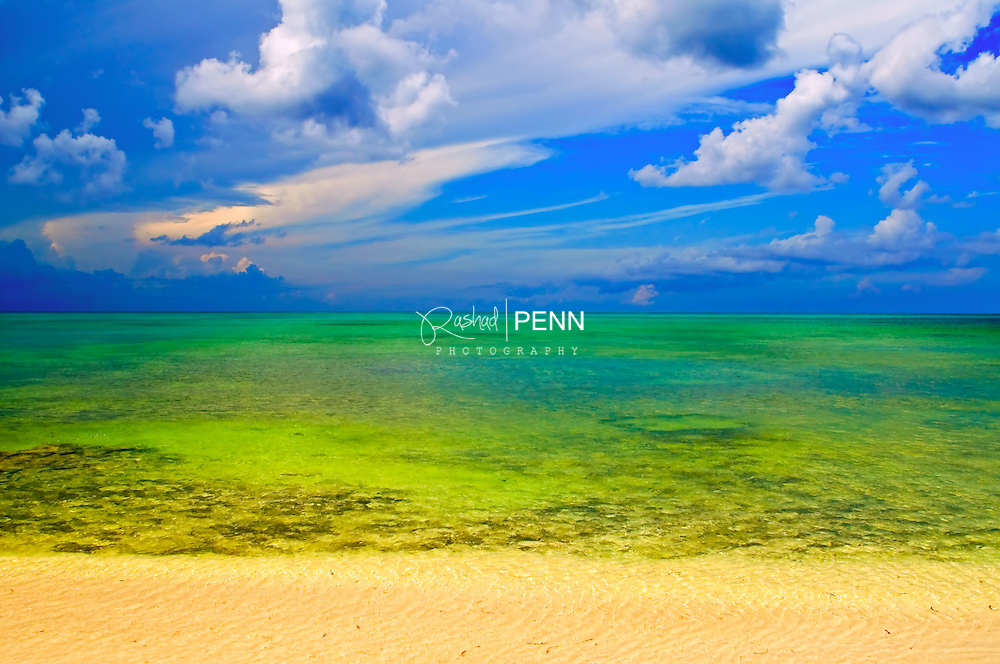 Phytoplankton overwhelms the beaches after a three day storm, and turns theturquoise waters green.