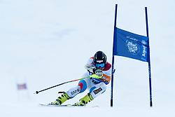 BRODARD Christophe, SUI, Giant Slalom, 2013 IPC Alpine Skiing World Championships, La Molina, Spain