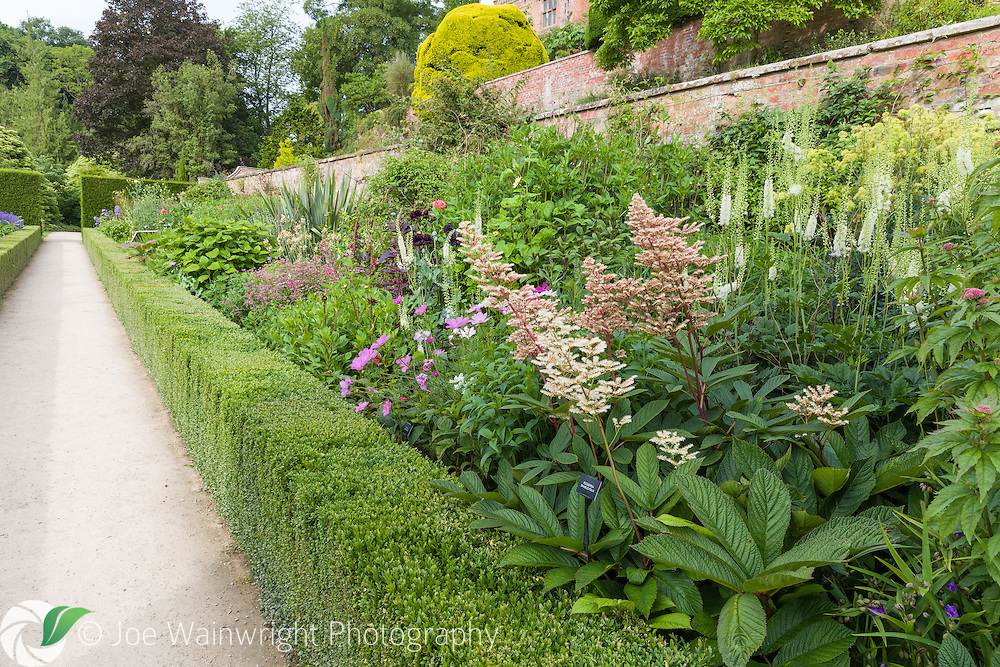 The Orangery Terrace at Powis Castle, Welshpool, photographed in July