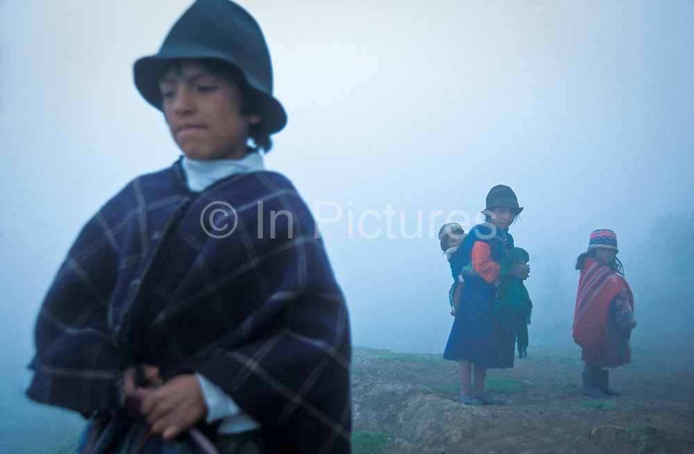 """Shrouded in early morning mist young """"Pansaleo"""" native indians high in the Andeas mountain range tend to their sheep near Angamarca town, Ecuador."""