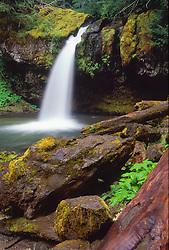 Iron Creek Falls, Mt. St. Helens National Volcanic Monument, Washington, US