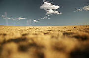 Landscape with clouds in Mongolia.