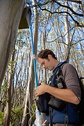 Sam Banks Checking Leadbeater's Possum Nest Box With Video