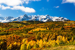 """Autumn snow at Dallas Divide in Colorado's San Juan Mountains outside of Ridgeway.  <br /> <br /> This iconic vantage point of the San Juan Mountains is iconic for a reason,  I love the layers and depth of the landscape. Many of the photographers around were bemoaning the fact that this was short of """"Peak Color"""".  <br /> <br /> Peak color? A dozen years ago I had an epiphany.   Why do we dislike """"green"""" in autumn?  I have come to appreciate green in the mix of the warm colors of autumn, the more color, the better I like it. A panoply of color for my photographers palate is a good thing.  <br /> <br /> While in the San Juan Mountains I shot several different vantage points along Dallas Divide, but this was the best.   The red of the scrub oak was very additive as was the green of the aspens that had not yet changed."""