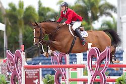 Kochetova Ljubov (RUS) - Aslan<br /> Horseware GP CSI 2*<br /> Wellington 2012<br /> © Hippo Foto - Cealy Tetly