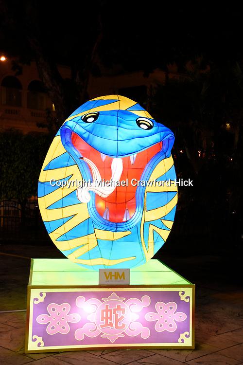 Snake Lantern at Chinese New Year