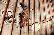 A family portrait, a sheep skin, a lid and a saw put up on the roof of a yurt.