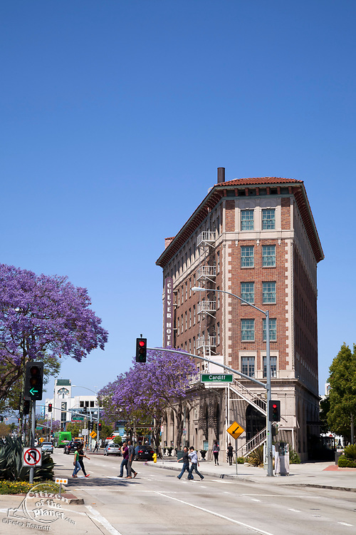 Culver Hotel and Jacaranda Trees in downtown Culver City. Los Angles, California