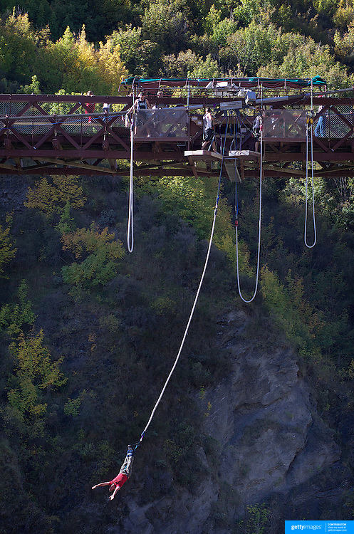 A bungy jumper from The AJ Hackett Kawarau Bridge Bungy Jump, Queenstown New Zealand. The Kawarau Bridge Bungy jump was the World's first Commercial bungy Jump and opened in 1988. The 43m jump attracts tens of thousands of bungy jumpers each year. Queenstown, Central Otago, South Island, New Zealand. 30th March 2011. Photo Tim Clayton..