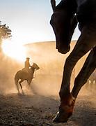 Gaucho on horseback at sunset, Estancia Huechahue, Patagonia, Argentina, South America