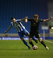 Football - 2016 / 2017 FA Cup - Third Round: Brighton and Hove Albion vs. MK Dons<br /> <br /> Dean Lewington of MK Dons holds off Brighton's Richie Towell at the Amex Stadium Brighton<br /> <br /> Colorsport/Shaun Boggust
