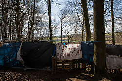 Wendover, UK. 9th April, 2021. A banner reading 'Battle of the Bean Can' is pictured during tree felling operations for the HS2 high-speed rail link in Jones Hill Wood. Tree felling work began this week, in spite of the presence of resting places and/or breeding sites for pipistrelle, barbastelle, noctule, brown long-eared and natterer's bats, following the issuing of a bat licence to HS2's contractors by Natural England on 30th March.