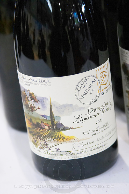 domaine zumbaum tomasi pic st loup languedoc france