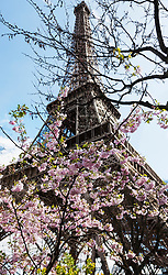 Low angle view of Eiffel Tower against sky, Paris, France