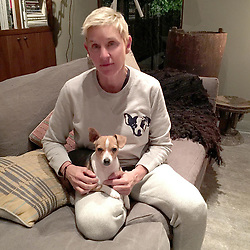 """Ellen DeGeneres releases a photo on Instagram with the following caption: """"It\u2019s @PetSmart\u2019s National Adoption Weekend! I adopted Augie and got so much love. #LaughDancePartner"""". Photo Credit: Instagram *** No USA Distribution *** For Editorial Use Only *** Not to be Published in Books or Photo Books ***  Please note: Fees charged by the agency are for the agency?s services only, and do not, nor are they intended to, convey to the user any ownership of Copyright or License in the material. The agency does not claim any ownership including but not limited to Copyright or License in the attached material. By publishing this material you expressly agree to indemnify and to hold the agency and its directors, shareholders and employees harmless from any loss, claims, damages, demands, expenses (including legal fees), or any causes of action or allegation against the agency arising out of or connected in any way with publication of the material."""