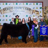 { DeSoto County Fair - Grand & Reserve Champions }
