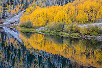 Reflections of the turning aspen trees in Crystal Lake along the Million Dollar Highway,  San Juan Mountains.  Colorado.