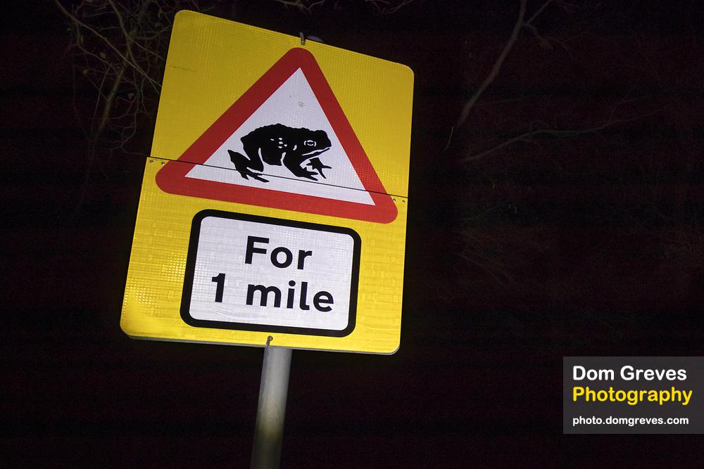 Toad crossing signage. Sussex, UK.