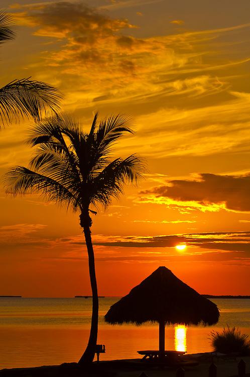 Sunset, Kona Kai Resort, Key Largo, Florida Keys, USA