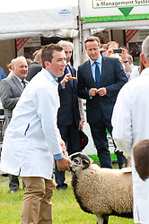 © Licensed to London News Pictures. 21/07/2014. Llanelwedd, UK. David Cameron visits the sheep pen at the show. A record numbers of visitors in excess of 240,000 are expected this week over the four day period of Europe's largest agricultural show. Livestock classes and special awards have attracted 8,000 plus entries, 670 more than last year. The first ever Royal Welsh Show was at Aberystwyth in 1904 and attracted 442 livestock entries. Photo credit: Graham M. Lawrence/LNP