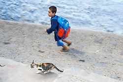 Boy running with cat, Chefchaouen, Morocco