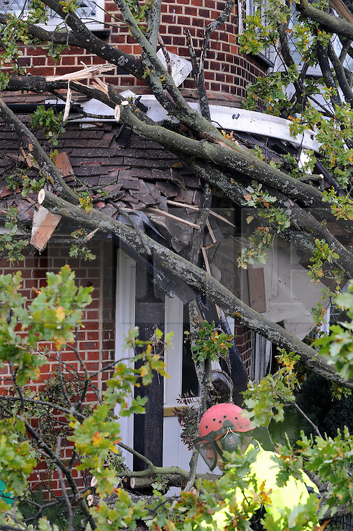 © Licensed to London News Pictures. 28/10/2013<br /> A House has been damaged by a fallen Oak tree which is 100 of years old  in Tudor Way,Pettswood,Greater London.<br /> Storm Damage today (28.10.2013)<br /> Photo credit :Grant Falvey/LNP