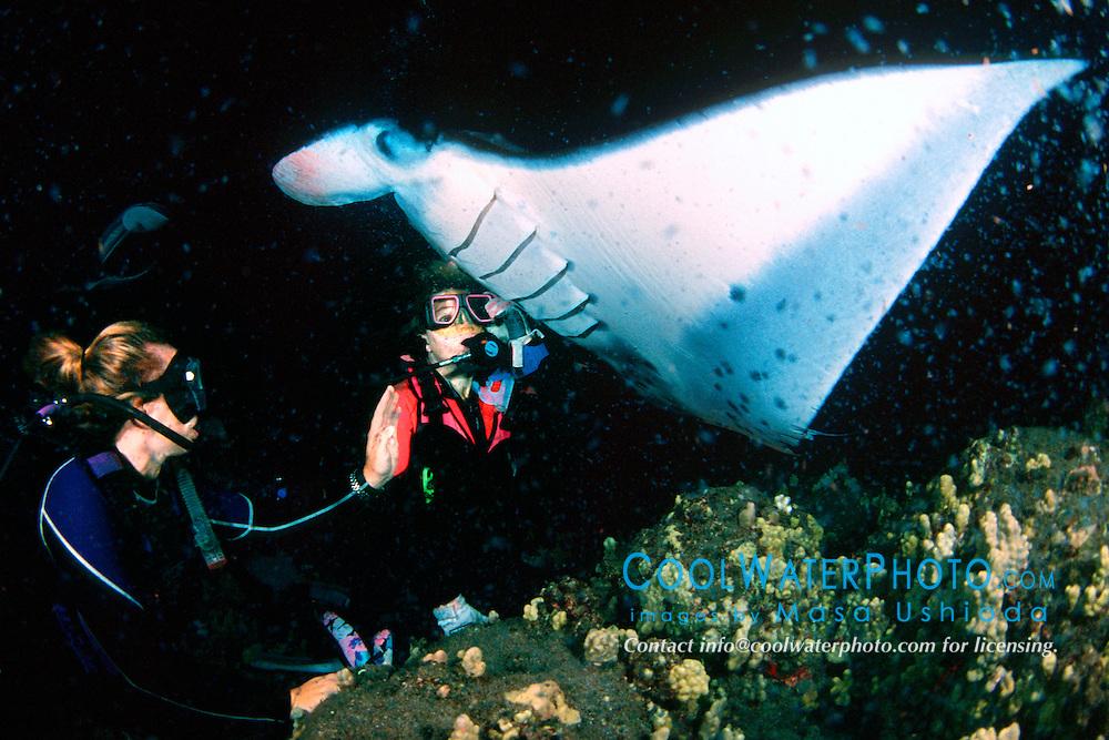 woman scuba divers and reef manta ray or coastal manta, Manta alfredi, feeding at night, Kona Coast, Big Island, Hawaii, Pacific Ocean, MR - model released