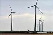 Nederland, Eemshaven, 15-4-2015In het havengebied in noord groningen staan ruim 90 windturbines waarvan de meesten van RWE. Ook een traditionele ouderwetse klassieke molen staat in het landschap hetgeen een mooi contrast geeft met de moderne versie.FOTO: FLIP FRANSSEN/ HOLLANDSE HOOGTE