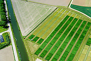 Nederland, Gelderland, Gemeente Overbetuwe, 09-06-2016; Valburg, maaien van gras in de vroege zomer ten behoeve van productie van veevoer (kuilgras). Rationele productie door gebruik te maken van GPS.<br /> Mowing grass in early summer for production of animal feed (silage). Rational production through the use of GPS.<br /> <br /> luchtfoto (toeslag op standard tarieven);<br /> aerial photo (additional fee required);<br /> copyright foto/photo Siebe Swart