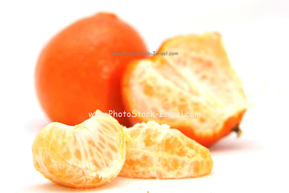 Cutout of a Mandarin on white background